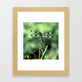 Dragonfly retouched Framed Art Print