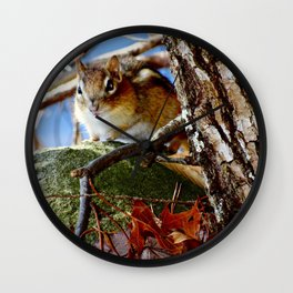 Chipmunk in the leaves Wall Clock