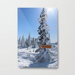 Winter mountans Metal Print