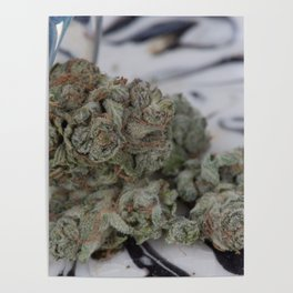 Silver Afghan Medical Marijuana Poster