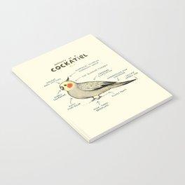 Anatomy of a Cockatiel Notebook