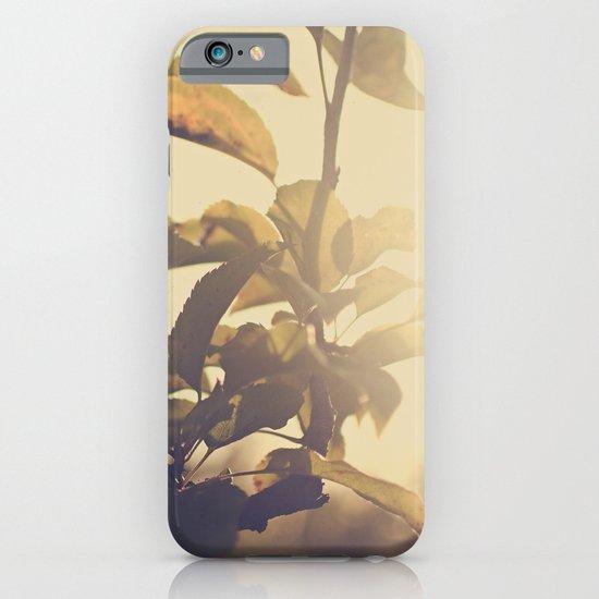 Fall Sun iPhone & iPod Case