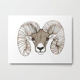 Ram Head in Color Metal Print