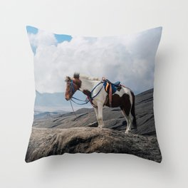 The Horse and the Volcano Throw Pillow
