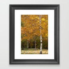 Autumn 72516 Framed Art Print