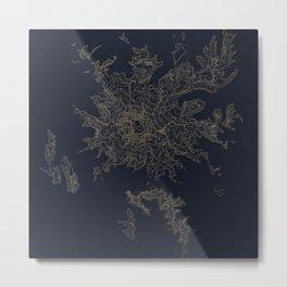 Mount Rainier, WA Topographic Contour Map Metal Print