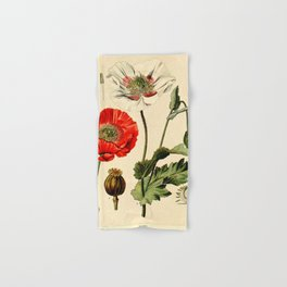Poppy picture from 1900 Hand & Bath Towel