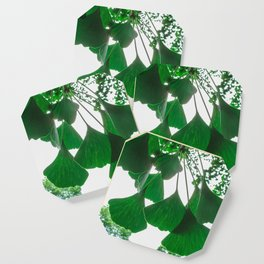 Ginkgo Leaves in Summer Coaster