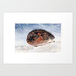 Hedgehog Facing Blizzard Art Print
