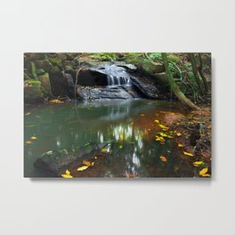 The Joy of the Seasons Metal Print