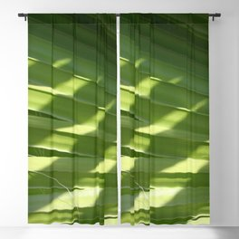 Ruffled Fan Palm Glossy Pleated Fronds Shadow Photograph Blackout Curtain