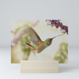 Ms. Hummingbird Checks Another Nectar Source Mini Art Print