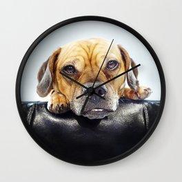 Super Pets Series 1 - Super Oaks 4 Wall Clock