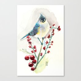 Blue Bird Tufted Titmouse Canvas Print
