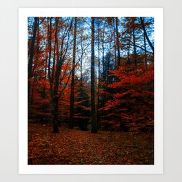 Red Forest Bloosm on Autumn Art Print