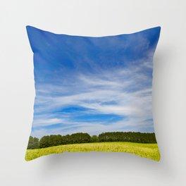 Wye Island Sky Field - Eco Harmony Throw Pillow