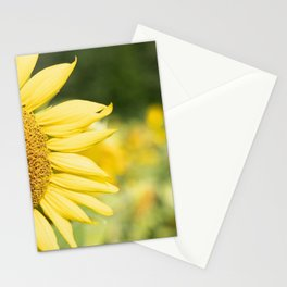 The Color of Sunflowers Stationery Cards