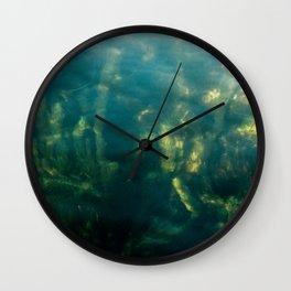 Fresh water seeweed, algae in lake Iseo, Italy Wall Clock