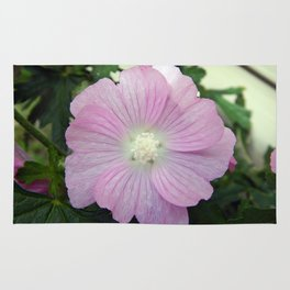 Pink Musk Mallow Rug