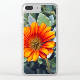 Lonely zerbera Clear iPhone Case