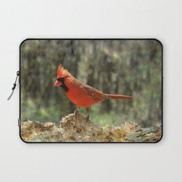 Northern Cardinal Laptop Sleeve