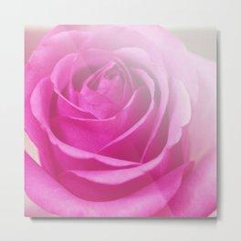 *Pinklight - Rose III Metal Print