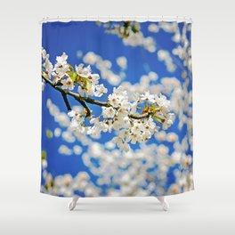 Spring Blossom IV Shower Curtain