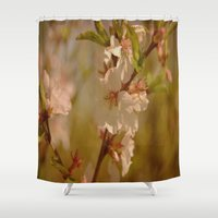 cherry blossoms Shower Curtains featuring Cherry Blossoms by Dorothy Pinder
