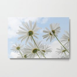 Remembrance Delicate White Daisies against Light Blue Cloudy Sky Metal Print
