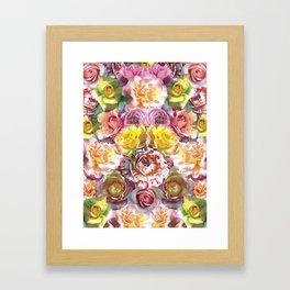 Rose Bloom Framed Art Print