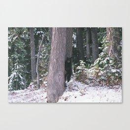 bear grills Canvas Print