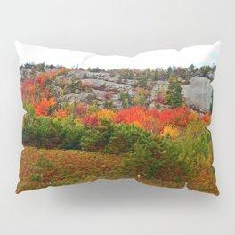 Rock Side Fall Colors Pillow Sham
