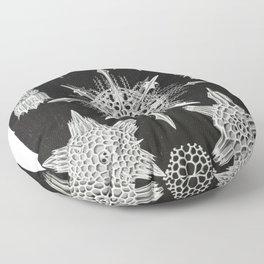Black and white Marine creatures illustration by Ernst Haeckel Floor Pillow