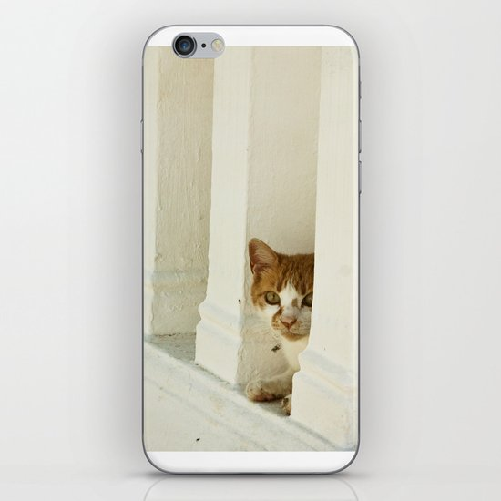 Little cat iPhone Skin