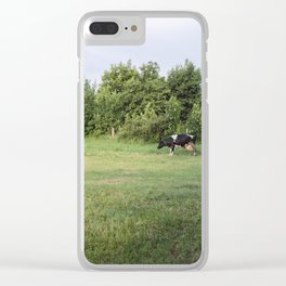 Landscape from a cow, a calf and some hay bales in a meadow Clear iPhone Case