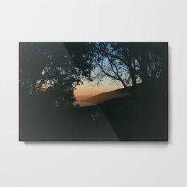 Sunset Between the Trees Metal Print