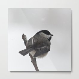 The Bravest Little Chickadee Metal Print