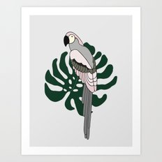 Tropical Parrot Art Print