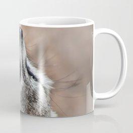 Meerkat looking for eagles Coffee Mug