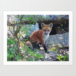 fox 2018-10 Art Print
