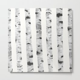 Birch Trees Metal Print