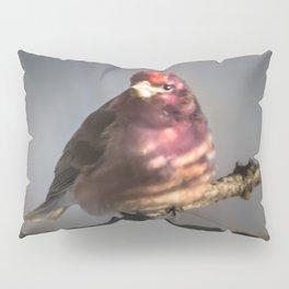 March Purple Finch Pillow Sham