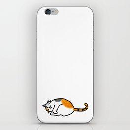 Comfy Calico Cat iPhone Skin