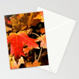 Red Leaves Stationery Cards