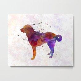 Anatolian Shepherd Dog in watercolor Metal Print