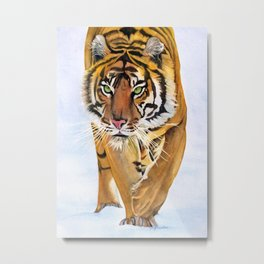 Walking Tiger Metal Print