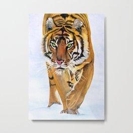Walking Tiger Metal Print