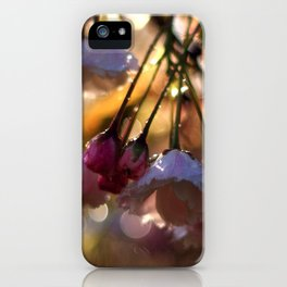 Catch the Morning Light iPhone Case