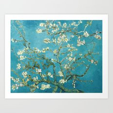 Almond Blossoms by Vincent van Gogh Art Print