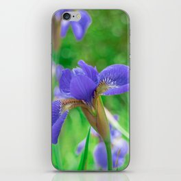 Group of purple irises in spring sunny day iPhone Skin